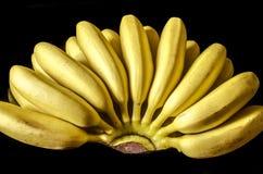 Grupper av mogna små bananer på en svart bakgrund Royaltyfri Foto