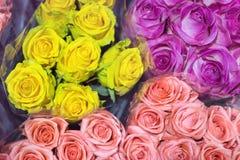 Grupper av multiclored rosor ny bakgrundsblomma Blomsterhandlareservice Grossistblomsterhandel Blommalagring Top beskådar Royaltyfria Bilder