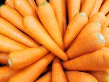 Grupper av nya orange morötter Royaltyfria Foton
