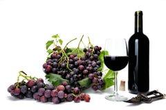 Grupper för röd druva och vinexponeringsglas på vit bakgrund arkivfoto