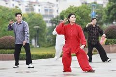 Gruppera övande Tai Chi i ottan, Yangzhou, Kina royaltyfri fotografi