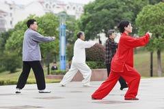 Gruppera övande Tai Chi i ottan, Yangzhou, Kina royaltyfria foton
