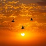 Gruppera stridhelikoptrar, Mi-24, Mi-8, varm solnedgång Royaltyfria Foton
