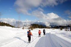 gruppfolk som snowshoeing Royaltyfri Foto