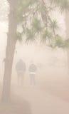 Gruppfolkkontur som går rinnande dimma, Phurua, Thailand Royaltyfri Foto