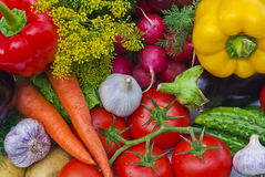 gruppgrönsaker Royaltyfri Bild