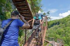 Grupphandelsresande reser på den konstgjorda körbanan i skogen av bergreserven Aktiv och sund livsstil på sommar va Arkivfoto