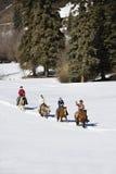 Gruppieren Sie Pferderueckenreiten. Lizenzfreies Stockfoto