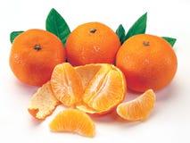 gruppmandarinapelsiner Arkivbilder