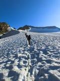 Gruppo ascendente della corda nelle alpi di Stubai Immagini Stock