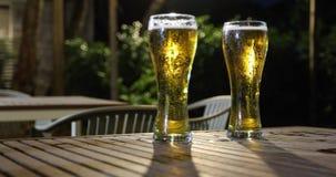 Gruppo asiatico di amici che hanno partito con le bevande alcoliche della birra ed i giovani che godono ad una barra che tosta i  fotografia stock
