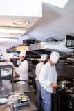 Gruppo dei cuochi unici che preparano alimento nella cucina Immagini Stock Libere da Diritti
