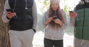 Gruppo dei giovani facendo uso di alba all'aperto dello Smart Phone, mattina Autumn Park Near Tree di comunicazione della rete di archivi video