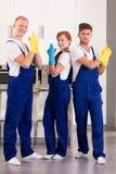 Gruppo dei pulitori professionali immagini stock