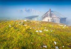 Gruppo Del Cristallo mountain range in the morning mist Stock Photo