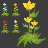 Gruppo del fiore dei fiori selvaggi Immagine Stock