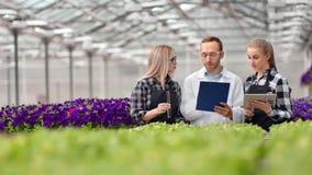 Gruppo del lavoratore agricolo che fa ricerca di scienza alla serra facendo uso del pc della compressa e del tubo di vetro video d archivio