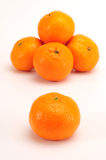 Gruppo del mandarino Fotografia Stock