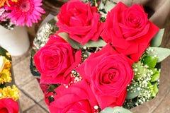 Gruppo della rosa di rosa da un mazzo Immagine Stock Libera da Diritti
