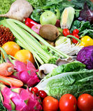 Gruppo di alimenti 1 Fotografie Stock Libere da Diritti