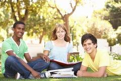 Gruppo di allievi adolescenti che chiacchierano nella sosta Fotografia Stock Libera da Diritti