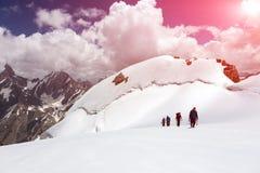 Gruppo di alpinisti che camminano sul giacimento di ghiaccio Immagine Stock