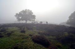 Gruppo di amanti di natura che camminano su un primo mattino Fotografie Stock