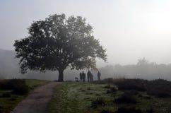 Gruppo di amanti di natura che si consultano su un primo mattino Fotografie Stock Libere da Diritti