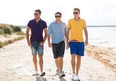 Gruppo di amici che camminano sulla spiaggia Fotografia Stock Libera da Diritti