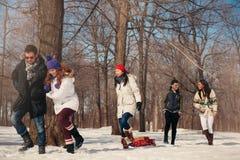 Gruppo di amici che godono che tira una slitta nella neve nell'inverno Immagini Stock