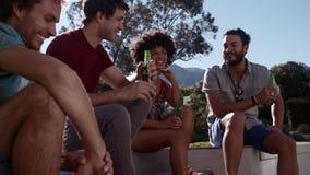 Gruppo di amici che hanno un partito all'aperto video d archivio