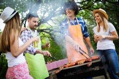Gruppo di amici che hanno un partito del barbecue in natura fotografia stock libera da diritti