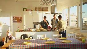 Gruppo di amici che mangiano pranzo a casa stock footage