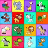 Gruppo di animali divertenti. Fotografia Stock