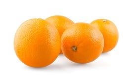 Gruppo di aranci Immagini Stock