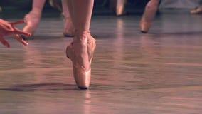 Gruppo di ballerini di balletto stock footage
