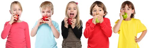 Gruppo di bambini dei bambini che mangiano sano di caduta di autunno della frutta della mela isolato su bianco immagini stock