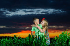Gruppo di bambini felici che giocano sul prato Fotografie Stock Libere da Diritti