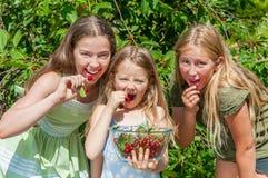 Gruppo di bambini felici che mangiano ciliegia immagini stock libere da diritti