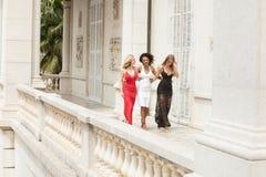 Gruppo di belle signore sexy in vestiti eleganti a summe soleggiato Fotografia Stock Libera da Diritti