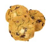 Gruppo di biscotti del mirtillo rosso della cioccolata bianca Fotografia Stock Libera da Diritti