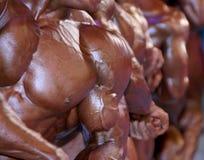 Gruppo di casse maschii muscolari Fotografia Stock Libera da Diritti