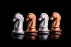 gruppo di cavalli di scacchi Immagini Stock Libere da Diritti
