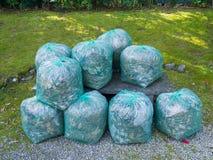 Gruppo di chiare borse verdi usate per il riciclaggio dei rifiuti del giardino Immagine Stock Libera da Diritti