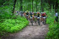 Gruppo di ciclisti di MTB che fanno concorrenza nella foresta Immagine Stock Libera da Diritti