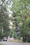 Gruppo di colombe che si siedono in una fila sul cavo ed il resto nella città Fotografia Stock Libera da Diritti