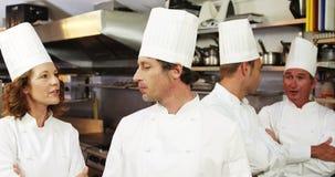 Gruppo di conversazione del cuoco unico stock footage