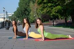 Gruppo di donne che assistono all'esercizio di yoga nel parco fotografia stock libera da diritti