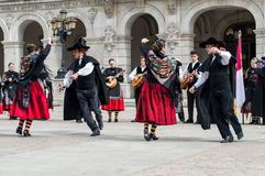 Gruppo di flamenco Fotografia Stock