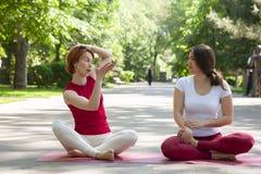 Gruppo di forma fisica che fa yoga nell'albero di posa del parco workout fotografie stock